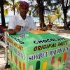uk_io_mauritius_eis_02