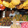 uk_ip_magic_island_markt_in_moalboal_04