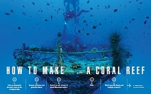 Maurotius - How to make a Coral Reef