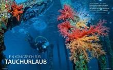 Jordan - A Kingdom for a diving holiday