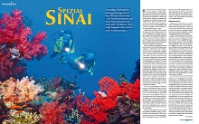 Sinai/Red Sea - Spezial